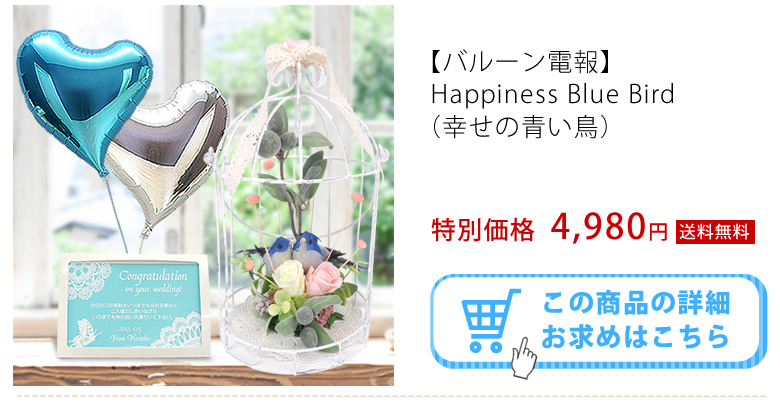 Happiness Blue Bird