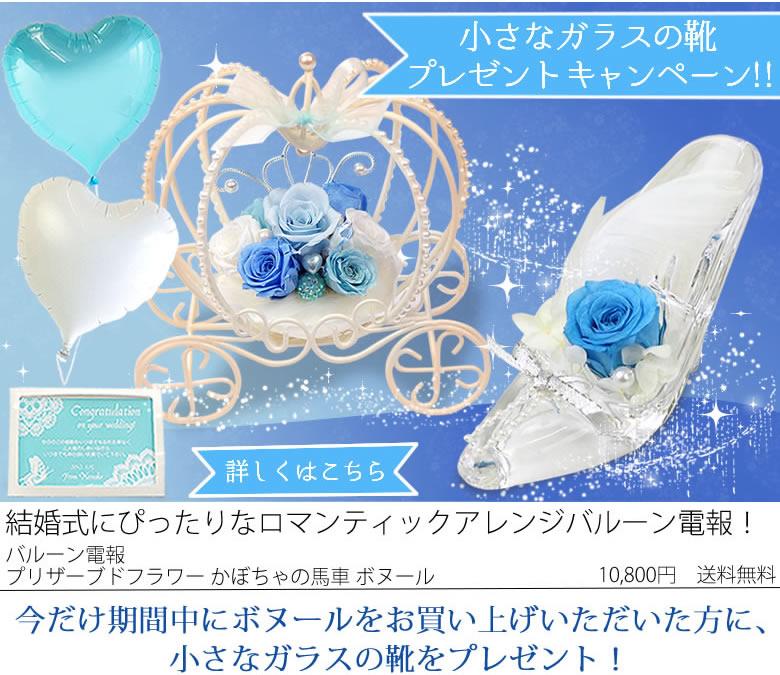 ガラスの靴キャンペーン